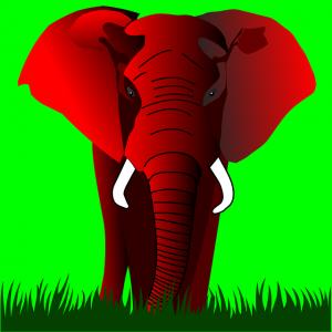 elephant-158555_640