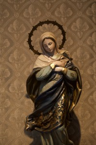 Celebrating the Immaculate Conception