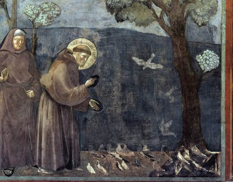 Giotto_di_Bondone_-_Legend_of_St_Francis_-_15._Sermon_to_the_Birds_-_WGA09139-e1492464740737 He Chose a Greater Chivalry: St. Francis of Assisi (Part 5)