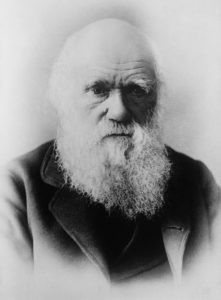 charles-darwin-62967_960_720-221x300 How Evolution Means the Death of the Soul